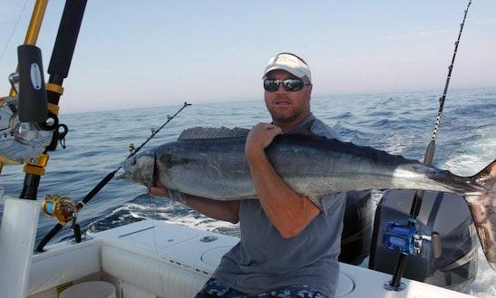 30ft Pursuit 300 Offshore Fishing Charter In Hampton, Virginia
