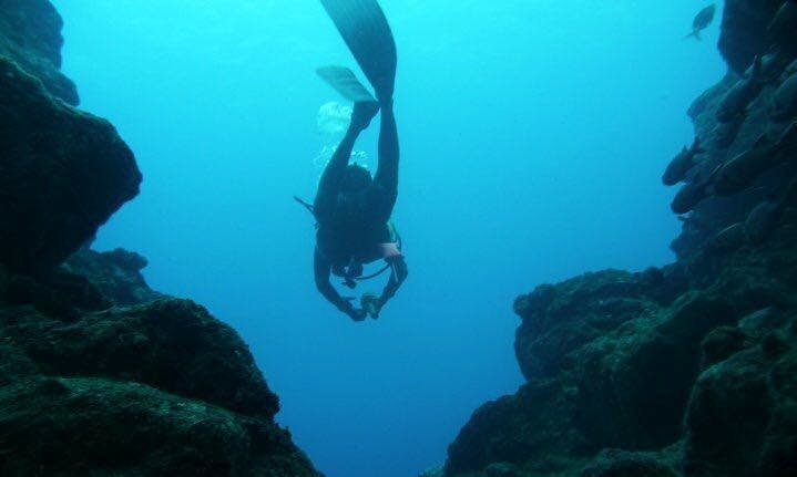 Enjoy Diving Trips & Courses in Tamarin, Mauritius