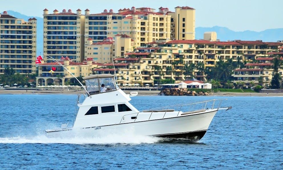 40ft Custom Luxury fishing charter in Puerto Vallarta