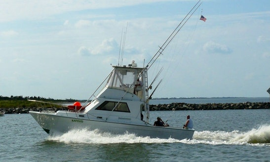 Sport fisherman boat fishing charter in cape may new for Wildwood nj fishing charters