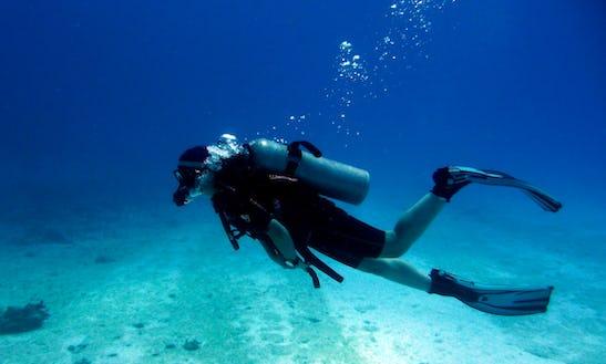 Enjoy Diving Trips & Courses In Brighton,england