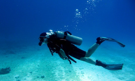 Enjoy Diving Trips & Courses In Brighton,england