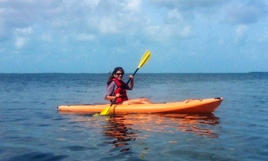 Single Kayak Rental In Key Largo, Florida