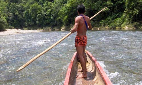 Canal Embera Indian Village Tours in Panamá