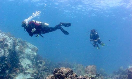 Enjoy Diving Trips & Courses In Tambon Ko Kut, Chang Wat Trat