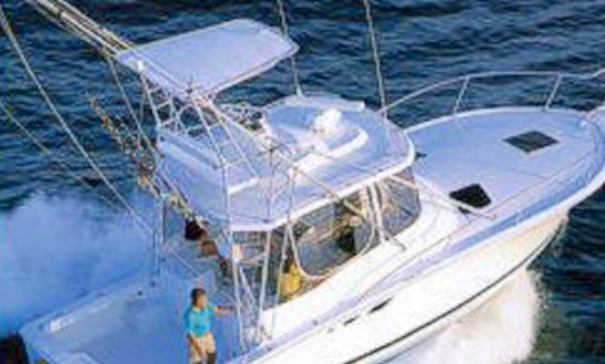 Fishing Charter On 34 Feet