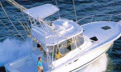 "Fishing Charter On 34 feet ""Reel Steal"" Yacht In Westerly, Rhode Island"
