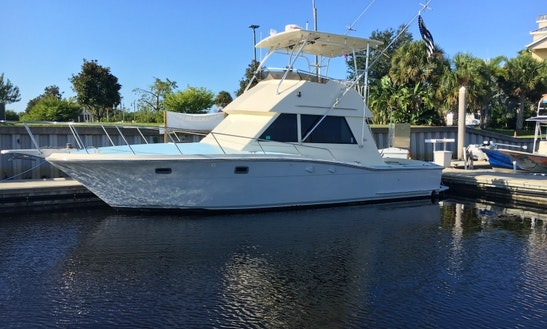 Motor Yacht Rental In Tampa