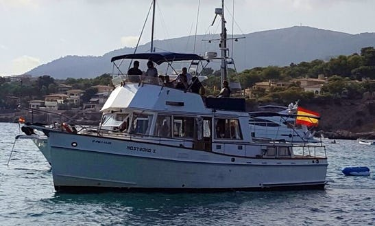 Charter The 42ft