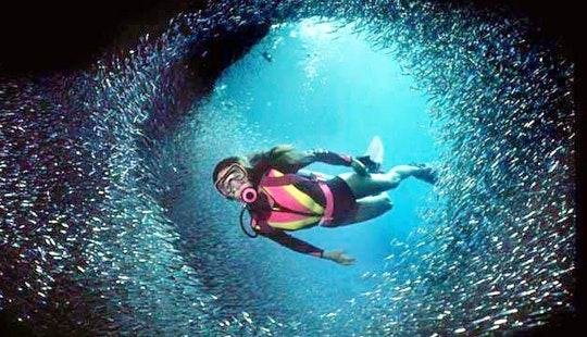 Diving And Snorkelling Trips In Malwan, Maharashtra