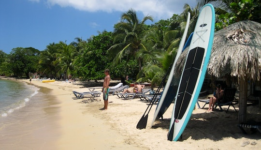 Stand Up Paddleboard Rental And Lesson In West End, Honduras