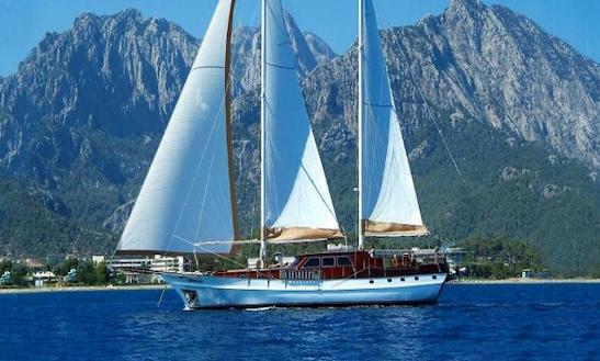 Charter 91ft