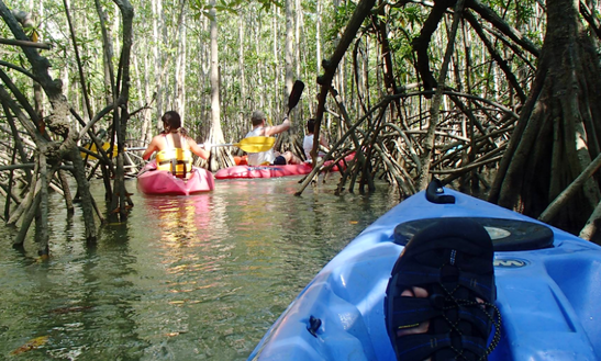 Kayak Rental In Esterillos Oeste, Costa Rica