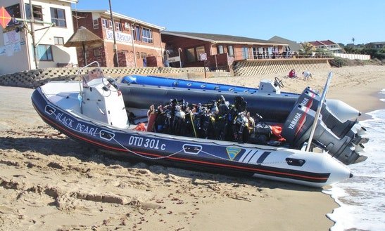 Scuba Diving Trip On The East Coast Of South Africa