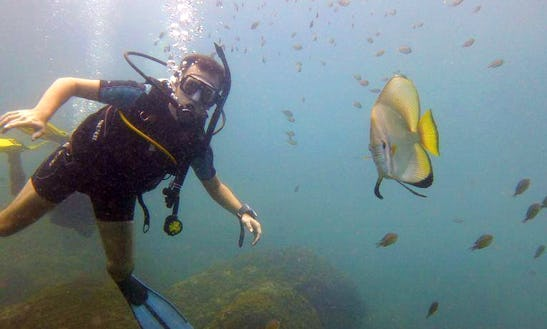 Discover The Amazing Underwater World Of Goa, India
