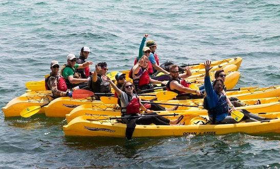 Kayak Rental And Kayak Tour In Sturgeon Bay, Wi