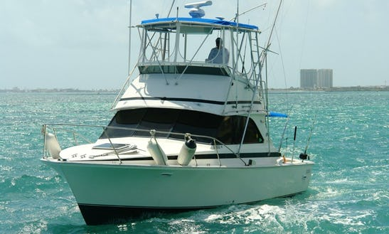 Charter The 37' Bertram Sportfisher Yacht In Cancún, Quintana Roo