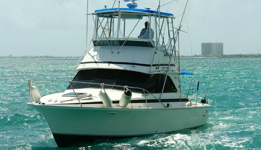 Charter The 37' Bertram Sportfisher Yacht In Cancún, Quintana Roo