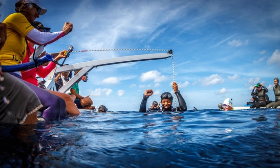 Freediving In Caribbean Netherlands