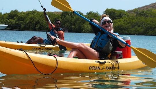 Kayak, Hike And Snorkel Adventure Tour And Rental In St. John, Usvi