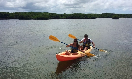 Guided Paddle Kayak Paddle Tour In Saint Mary, Antigua And Barbuda