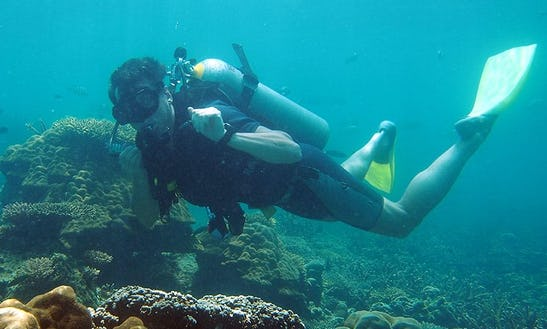 Fun Diving Trips And Scuba Diving Courses On Tioman Island, Malaysia
