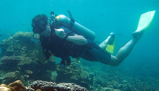 Fun Diving Trips And Scuba Diving Courses On Tioman Island, Malaysia