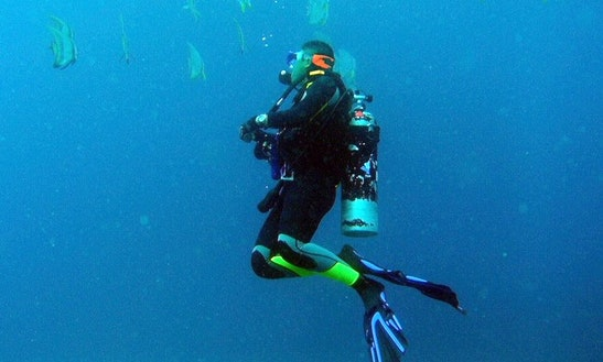 Enjoy Diving And Snorkeling Trips In Muang Pattaya, Thailand