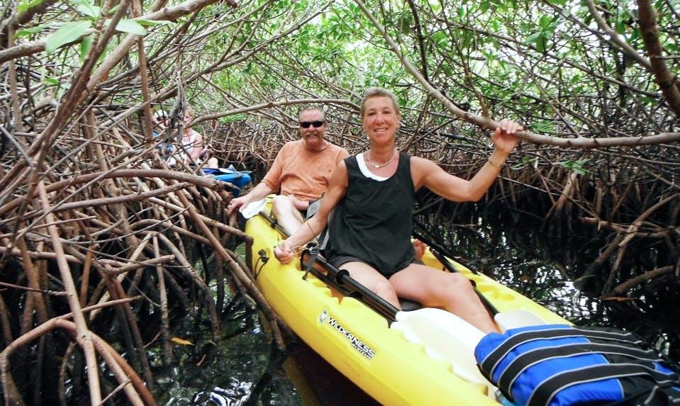 Enjoy Kayak Tours in West Bay, Cayman Islands