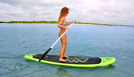 Hire A Stand Up Paddleboard In Lochgoilhead, Scotland