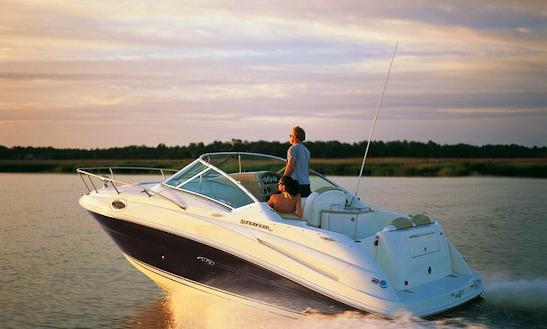 Rent 26' Sea Ray Sundancer 251 Kk Motor Yacht In Punat, Croatia
