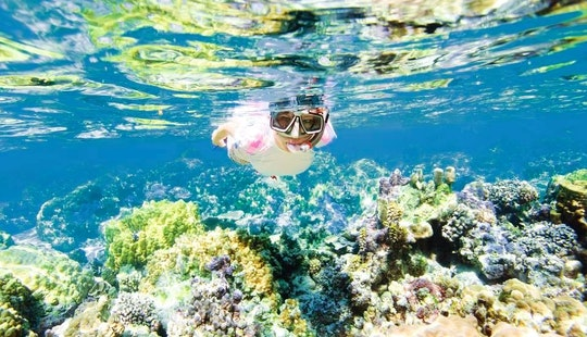 Snorkeling Tours In Flacq, Mauritius