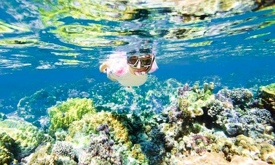 Enjoy Snorkeling Tours In Flacq, Mauritius