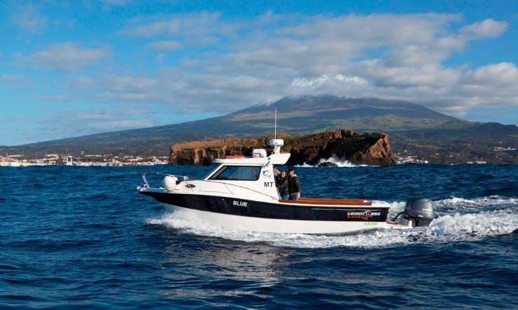 Deep Sea Fishing in Madalena, Portugal on 29' Blue Cuddy Cabin