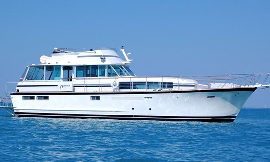 41ft Searay 360 Motor Yacht Rental Charter In Chicago