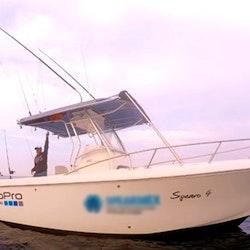 27ft spearo 4 fishing charter in punta de mita mexico for Punta mita fishing