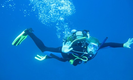 Enjoy Diving Trips In Umkomaas, South Africa