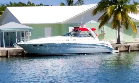 Charter Motor Yacht In West Bay, Cayman Islands