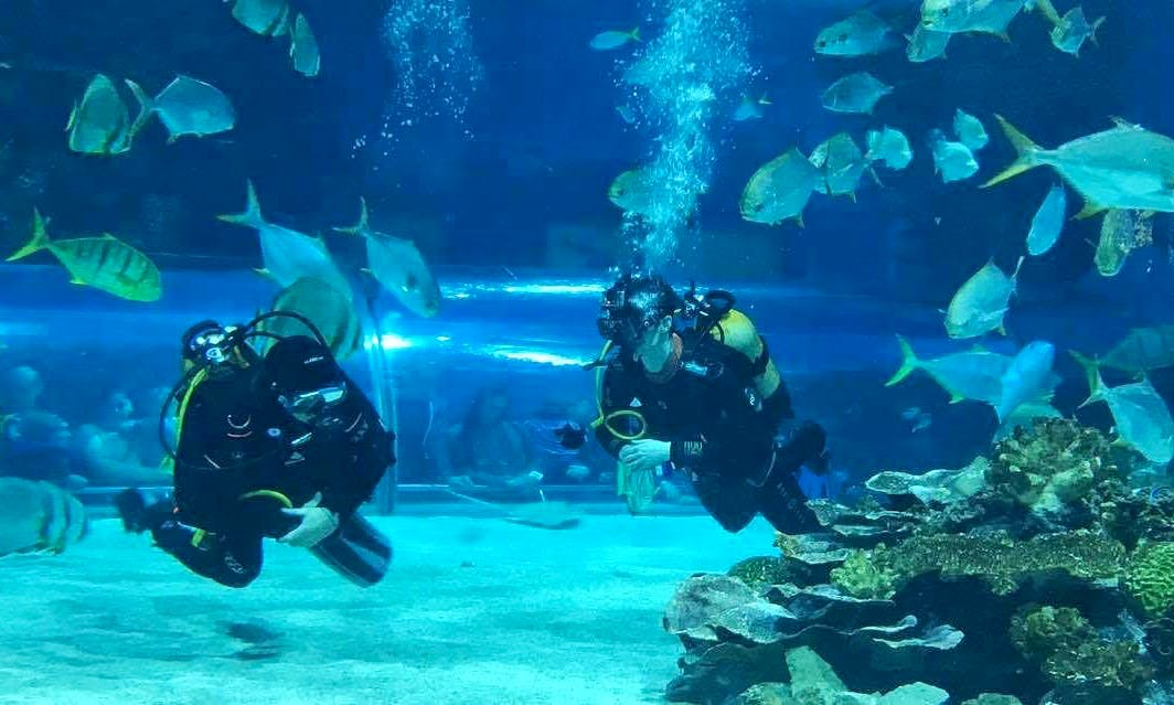 Diving Tours and Courses in Budapest, Hungary