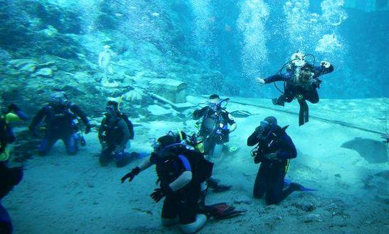 Enjoy Diving In Tarpon Springs, Florida