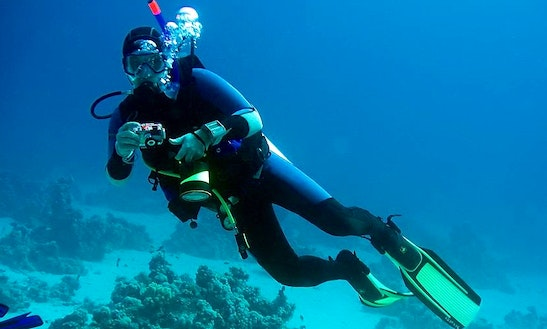 Enjoy Diving Trips In Lagoa De Albufeira, Portugal