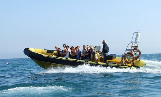 Charter Karelisa Rigid Inflatable Boat In West Lulworth, England