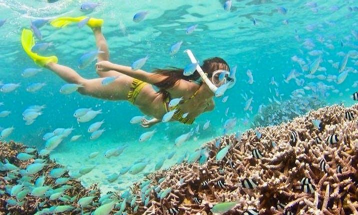 Enjoy Snorkeling in Trou d'Eau Douce, Flacq