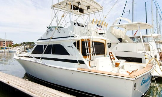 38' Inboard Propulsion Charter In Norfolk, Virginia