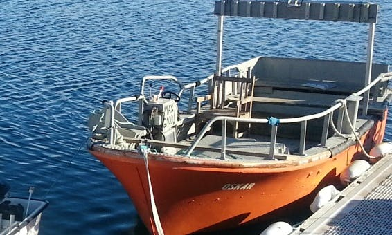 Enjoy Fishing in Oksvoll, Norway on Center Console
