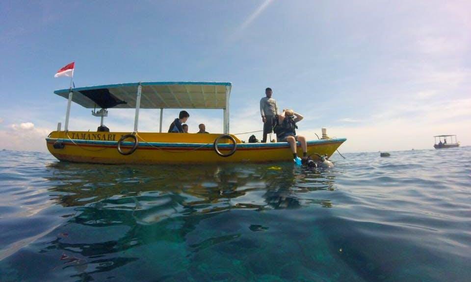 Enjoy Diving Trips & Lessons in South Kuta, Bali