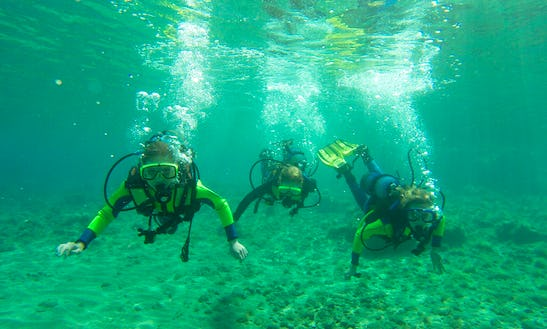 Enjoy Diving Trips And Courses In Paphos, Cyprus