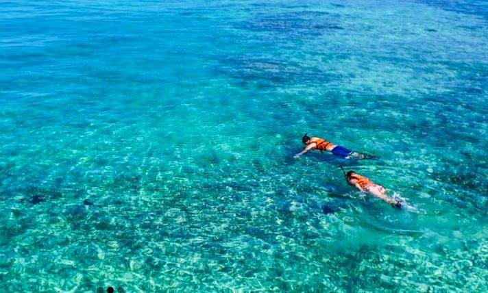 Reef Snorkeling in Bermuda