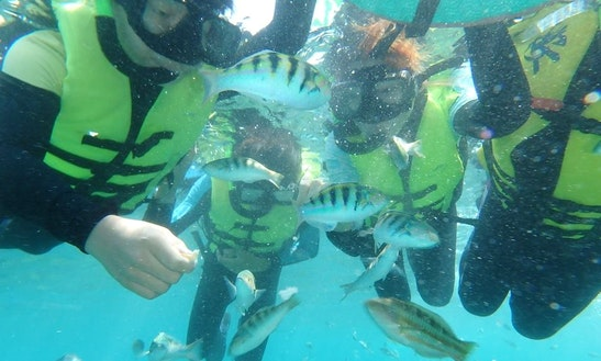 Enjoy Snorkeling Tours In Pingtung, Taiwan