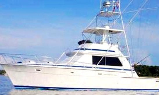 42' Bertram Sports Fisherman In Playa Flamingo, Costa Rica